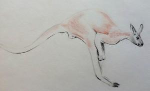 kaenguru-2
